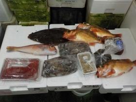 5鮮魚セット2018301