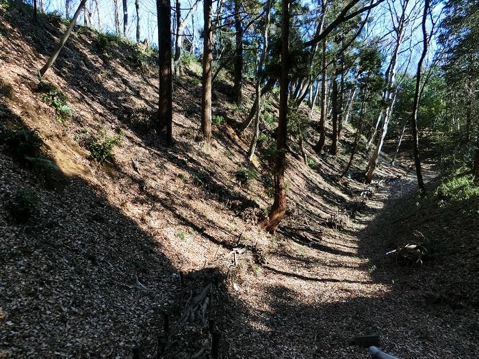 三ノ丸の堀