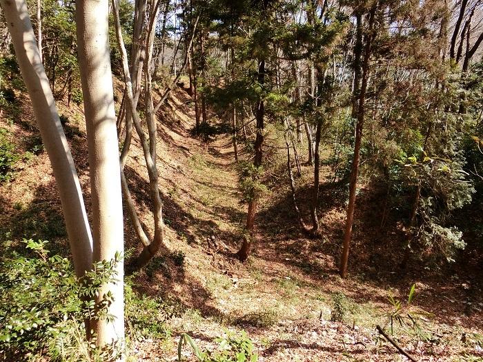 三ノ丸東側の堀