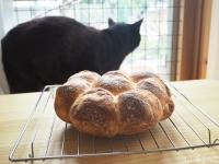 JKとパン3