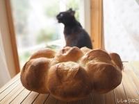 Jkとパン4