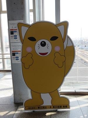 IMG_8420 豊川