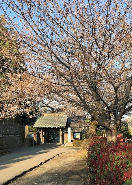 浄見寺の山門