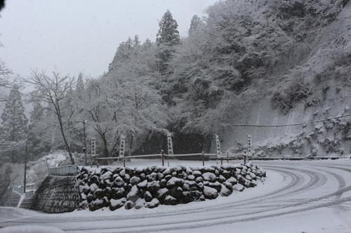 20180321 金櫻神社出入口
