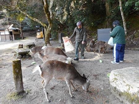 もみじ谷公園3-11