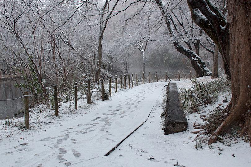 雪景色IMG_7126