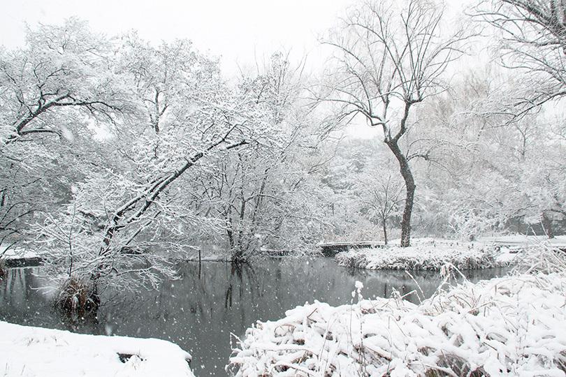 雪景色IMG_7334