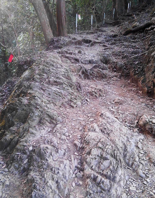 岩の道スマホ写真MKIMG7457