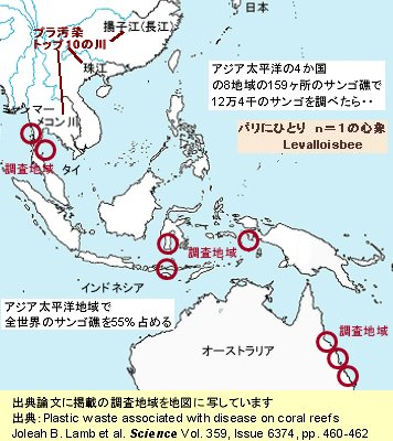 サンゴ礁の調査地域