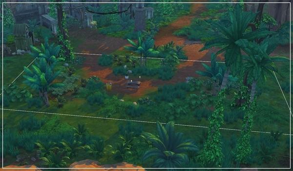 TS4_JungleTrial-28.jpg