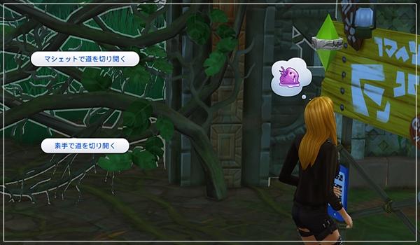 TS4_JungleTrial-37.jpg