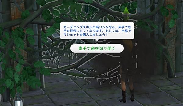 TS4_JungleTrial-72.jpg