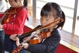 バイオリン (11)