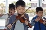 バイオリン (22)