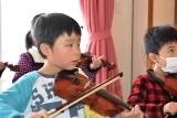 バイオリン (24)