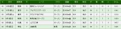 カミノケ93S戦績