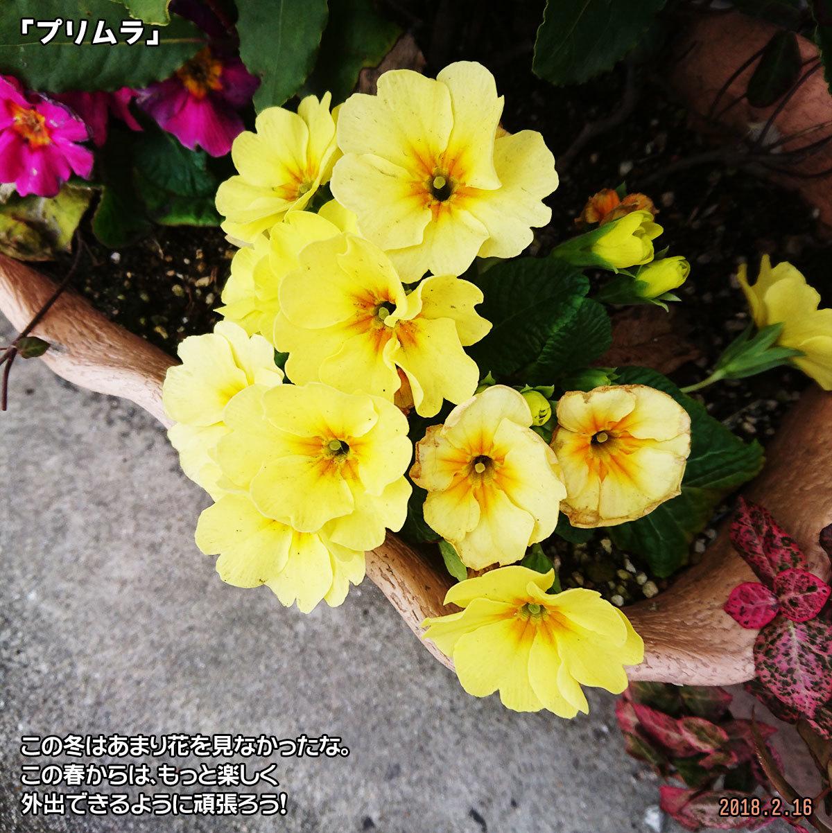 DSC_5795.jpg