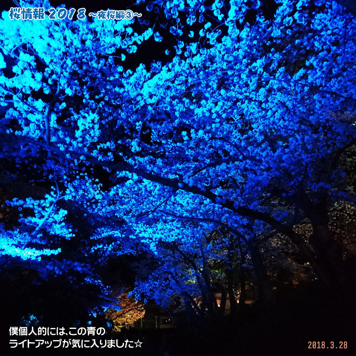 DSC_6496.jpg