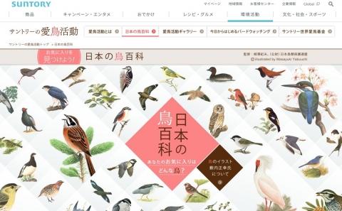 鳥の名前をどこまで知ってますか?