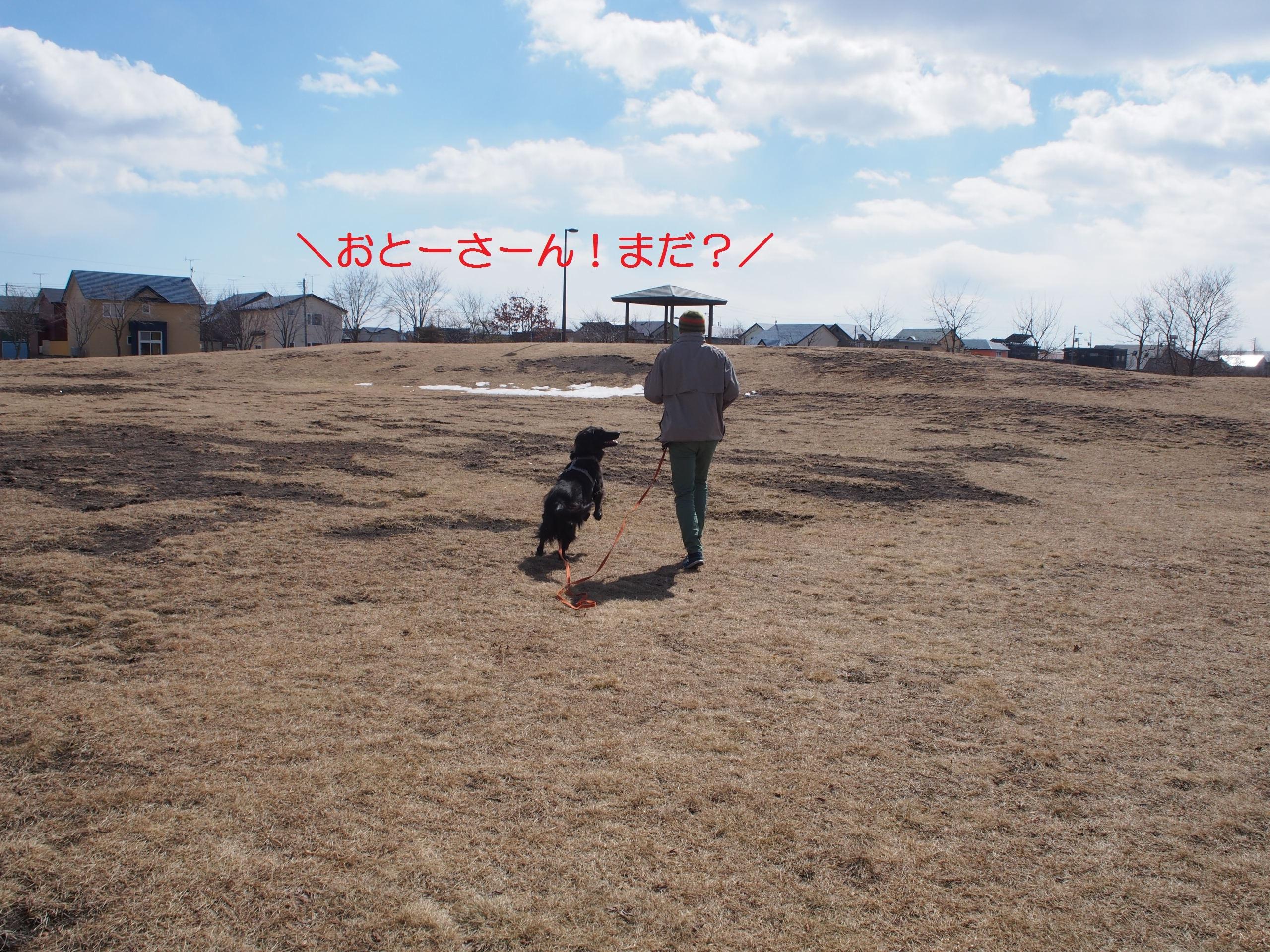 2018-03-17 (02)-2