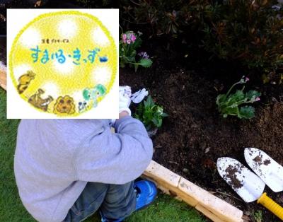 花壇の植え替え⑦