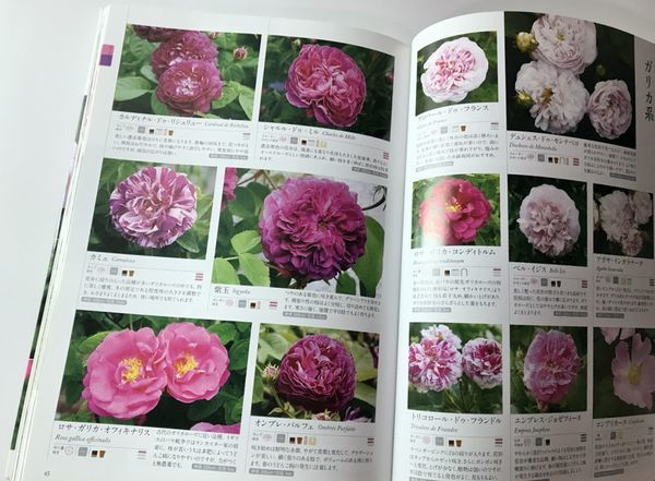 3,19薔薇の便利帳-2jpg