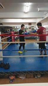 ボクシング15