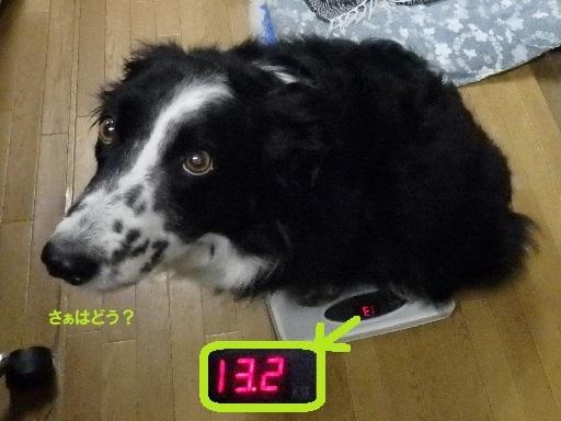 300327-3.jpg