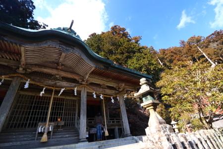 20180217_5tamaki_09.jpg