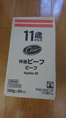 しろひめ0203