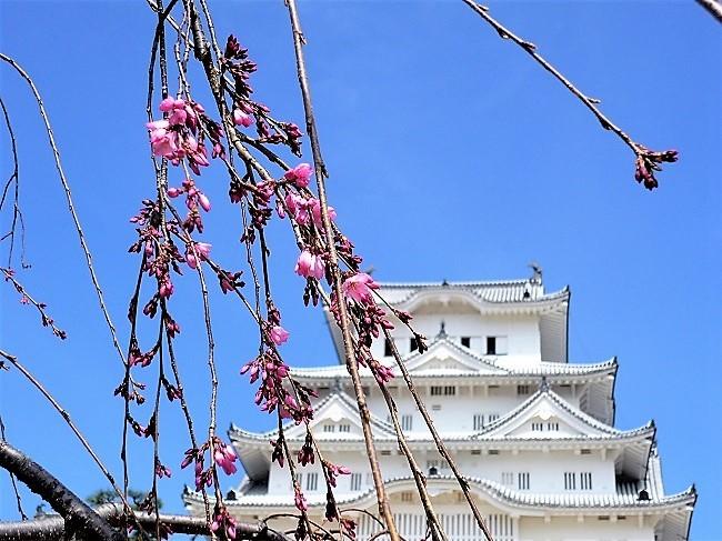 姫路城その2
