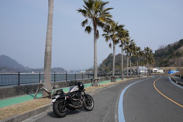 ⑪20180224生口島