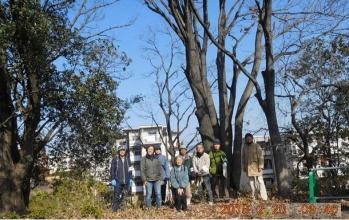 03高野台アベマキ前