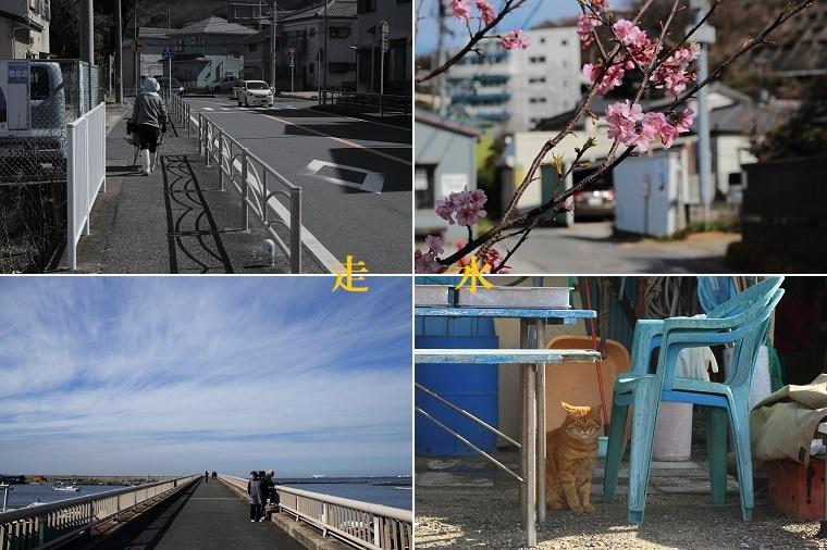 20180303走水(横須賀)