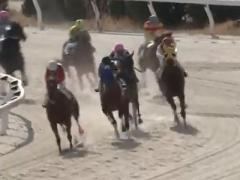 20180208 笠松5R 個人協賛競走 C パイオニアワーク 05
