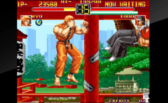 龍虎の拳8