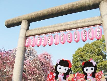 小村井 香取神社の梅まつりです