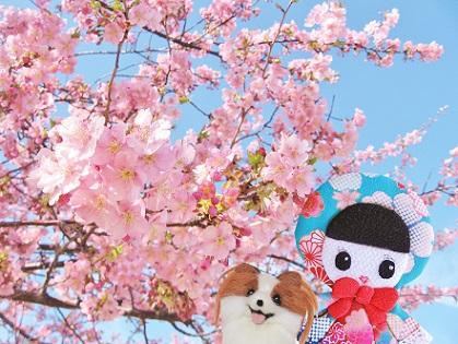 河津桜のおまけは