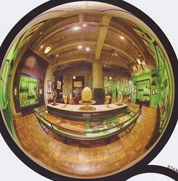 インターメディアテク 魚眼レンズ1