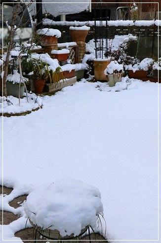 今年2度目の積雪~