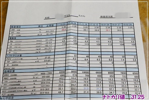 2月20日の検査結果★