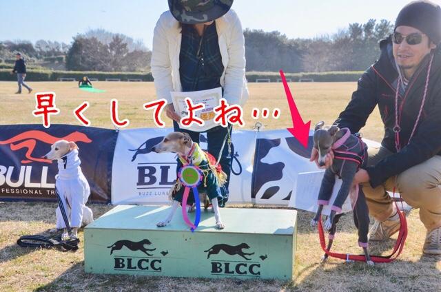 fc2blog_201803152034553e4.jpg