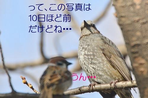 040_20180315193648b57.jpg