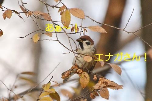 050_201801191851452cc.jpg