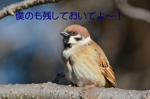 120_20180224212217df0.jpg