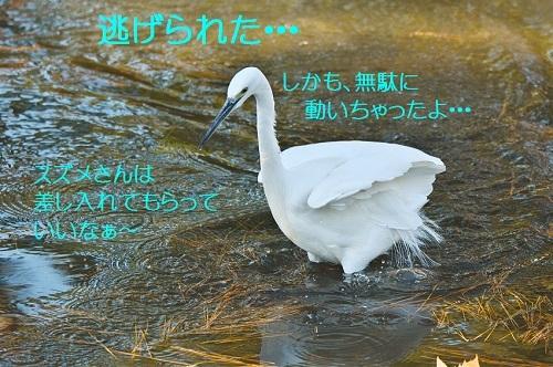 130_2018012319490807f.jpg