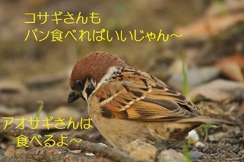 140_20180123194909fd9.jpg