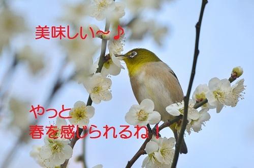 140_20180304210446fca.jpg