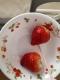 差しいれのイチゴ