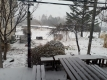 午前中に雪が積もり始めた